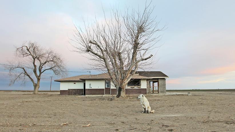 Klimaschutz: Dürre in Kalifornien
