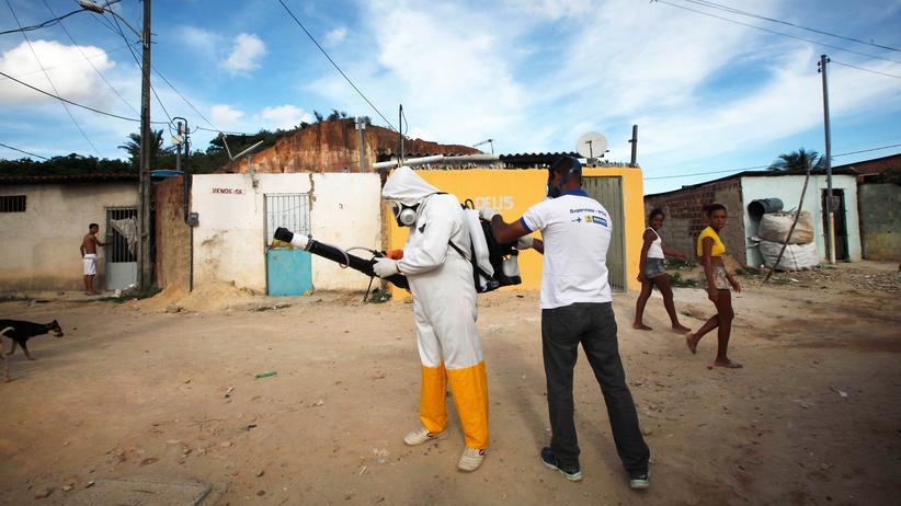 Zika-Virus: Nach monatelangem Kampf gegen Zika, wie hier in Recife im Nordosten Brasiliens, wurde der Notstand aufgehoben.