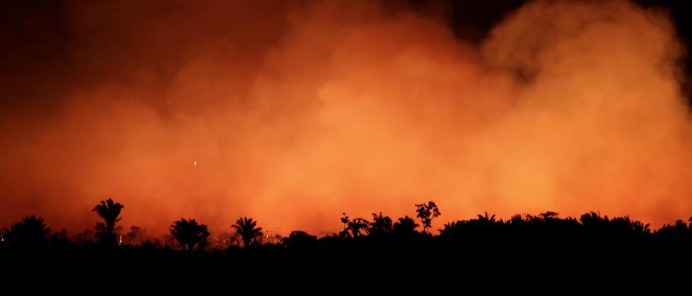 Waldbrände: Brasilien verbittet sich Einmischung aus dem Ausland