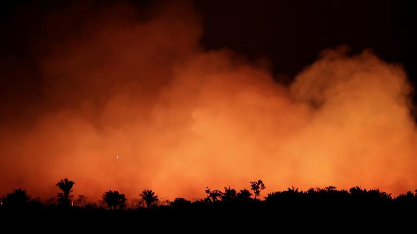 Waldbrände: Rauchschwaden über einem brennenden Waldstück im Amazonasgebiet