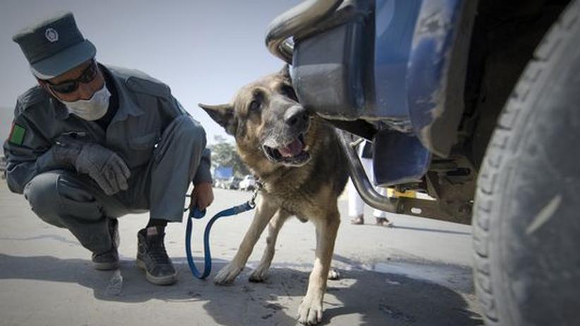 """Afghanistan: """"Die neue Bundesregierung muss den Abzug auf den Weg bringen"""""""