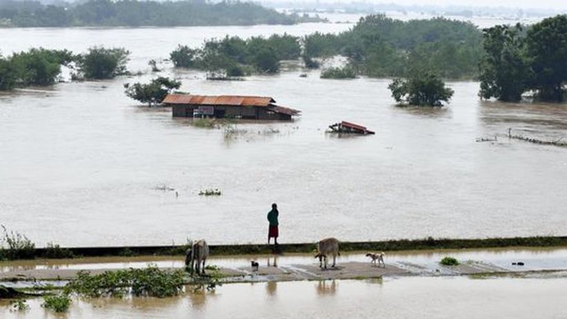 Die Phillipinen versinken in den Fluten, und in Nordkenia herrscht seit Monaten eine verheerende Duerre.
