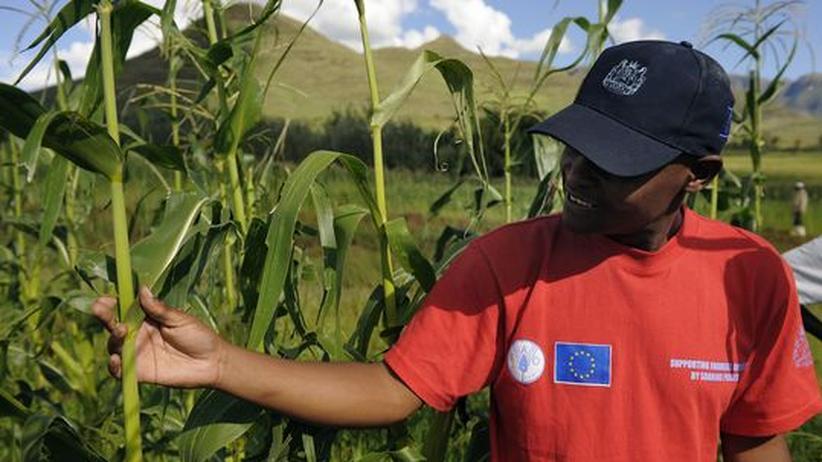 Entwicklungspolitik: Europas Entwicklungshilfe ist zu wenig koordiniert