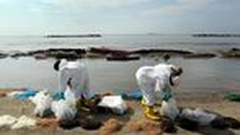 Ölpest im Golf von Mexiko: Obama will die Ölindustrie knebeln