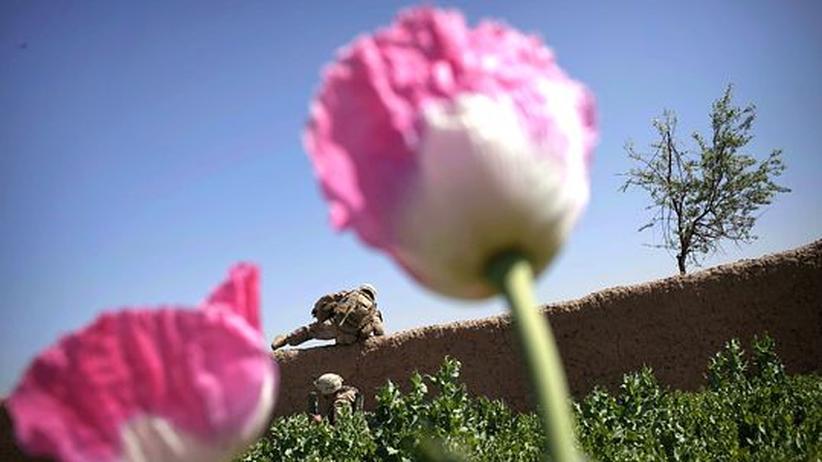 Afghanistan: Wie sich die USA Feinde machen