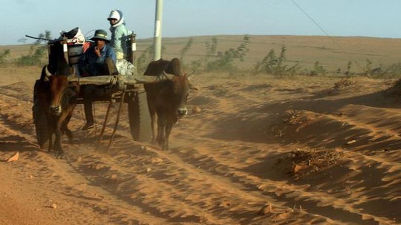 Desertifikationsbekämpfung: Die Trockengebiete nicht vergessen