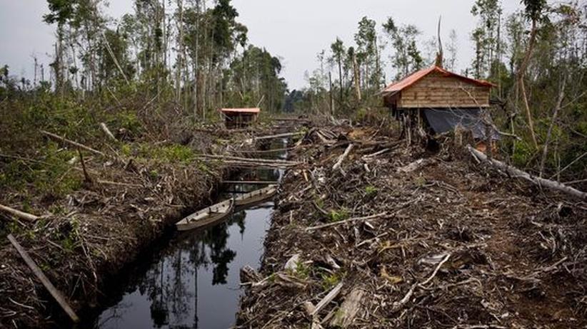 UN-Klimakonferenz: Wir brauchen eine Geoethik!