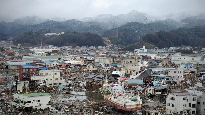 """Atomkrise: """"Für Japan hatte die Kernkraft ihren Reiz"""""""