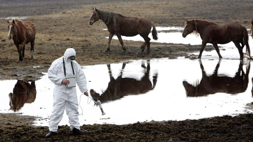 Tschernobyl: Wie Weißrusslands Diktator Tschernobyl verdrängt