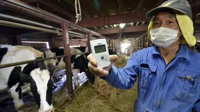 Japan: Die Sorgen der Landwirte von Fukushima