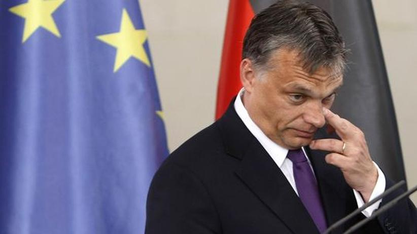 Kampf für Demokratie: Geballte Kraft gegen Orbánistan