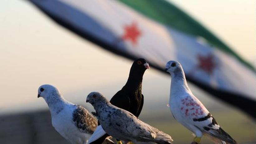Aufstand in Syrien: USA und UN unterstützen Forderungen nach Gefechtspause