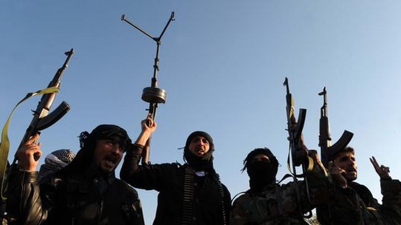 Schutzzonen: Die beste der schlechten Syrien-Optionen