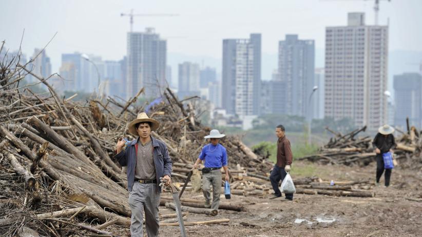 China: Chinas Kader außer Rand und Band