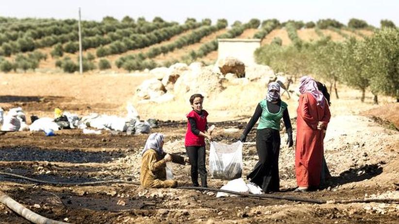 Syrien: Ein Leben im Kriegszustand