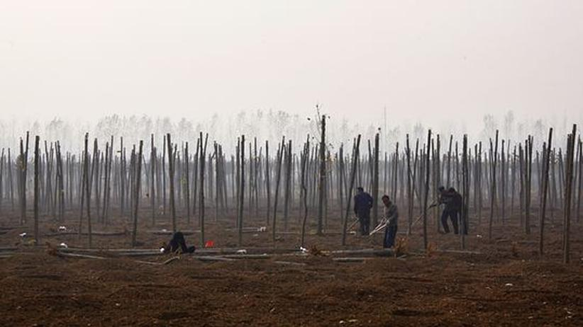 Umweltpolitik: Böden brauchen eine Lobby