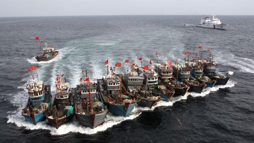 World Ocean Review: Die Mafia der Piratenfischer