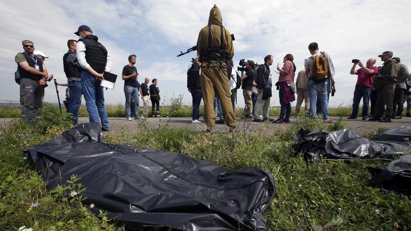 MH17 Absturz Ukraine