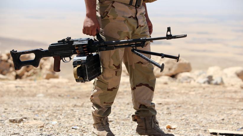 """IS-Terror: """"Wir müssen den Kurden Waffen schicken"""""""