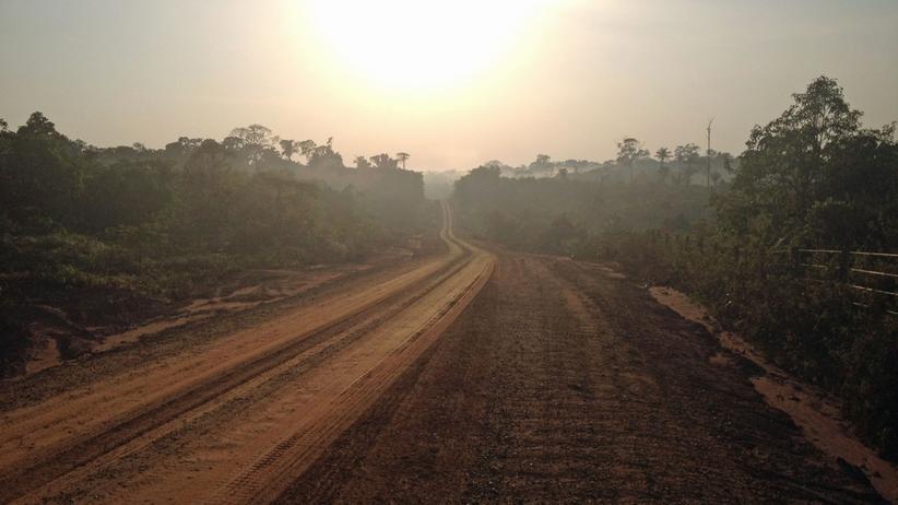 Blick auf ein Teilstück der transamazonischen Autobahn