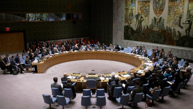 Irakischer UN-Botschafter: UN-Sicherheitsrat in New York