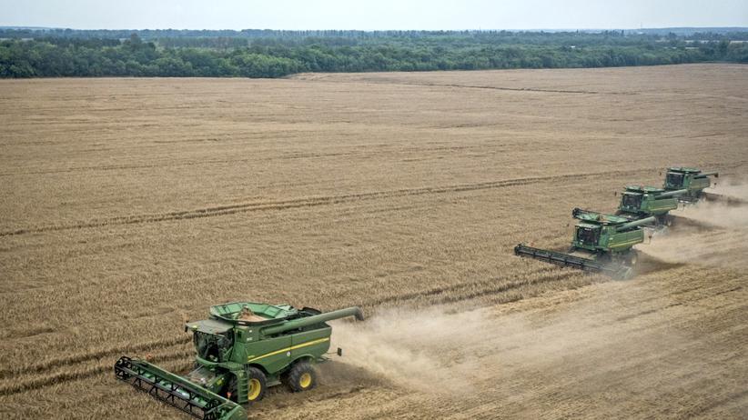 Ukraine: Wirtschaft, Ukraine, Monsanto, Agrarwirtschaft, Ukraine, Russland, Viktor Janukowitsch, Weltbank, Saudi Arabien, Kiew, Sachsen-Anhalt