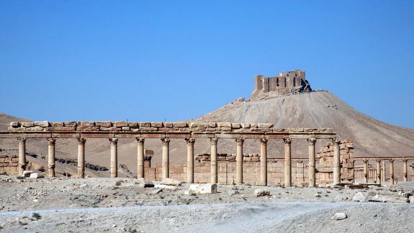 Politik, Syrien und Irak, Terrorismus, Syrien, Islamischer Staat, Unesco-Weltkulturerbe, Irak