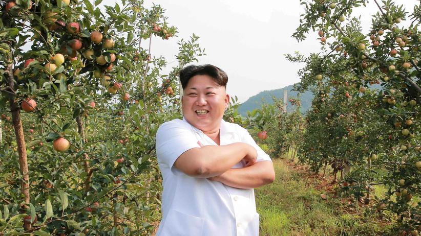 Nordkorea: Kim Jong Un erlaubt Familienzusammenführung