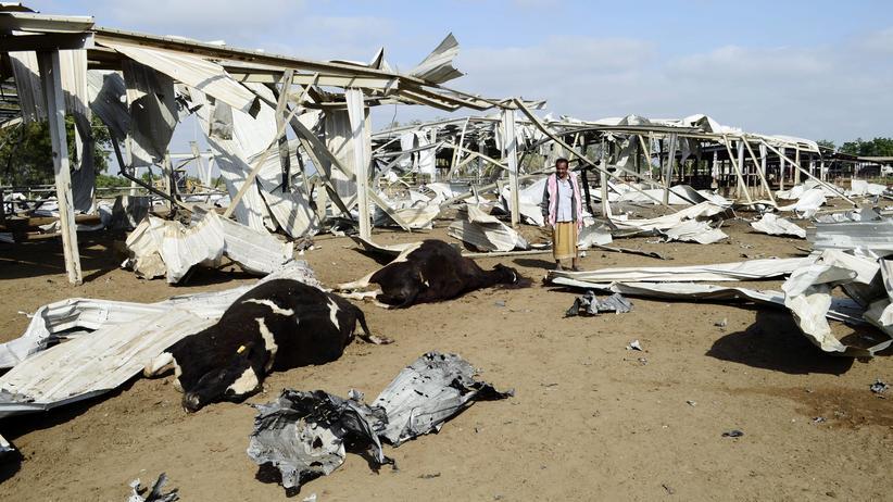 Jemen: Ein Mann betrachtet seine bei einem Luftangriff der arabischen Militärallianz getöteten Kühe in der jemenitischen Provinz.