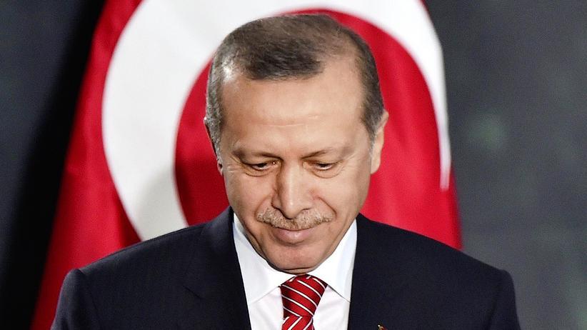 Erdogan Parlament Entmachtung