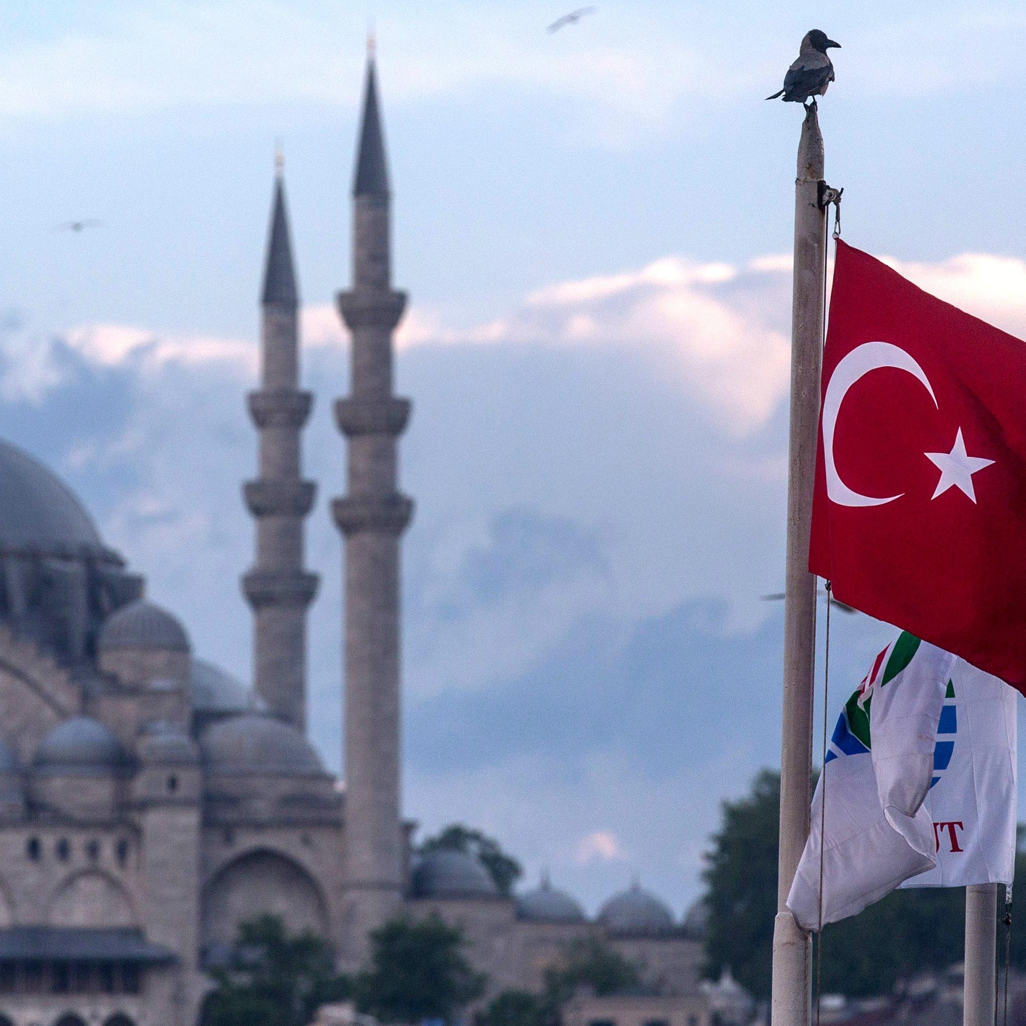 Möwen, die durch den Himmel von Istanbul fliegen
