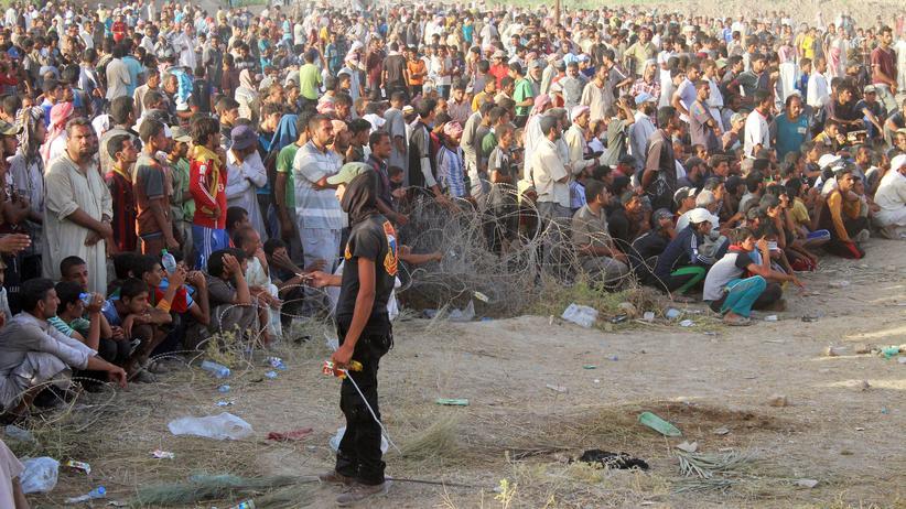 Falludscha: Mehr als 60.000 Menschen sind auf der Flucht, seit die irakische Armee eine Offensive auf Falludscha gestartet hat. Die Stadt wurde vom IS belagert.