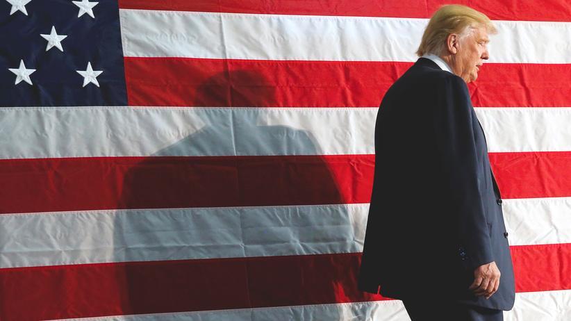 Donald Trump: Das Kabinett in seinem Schatten