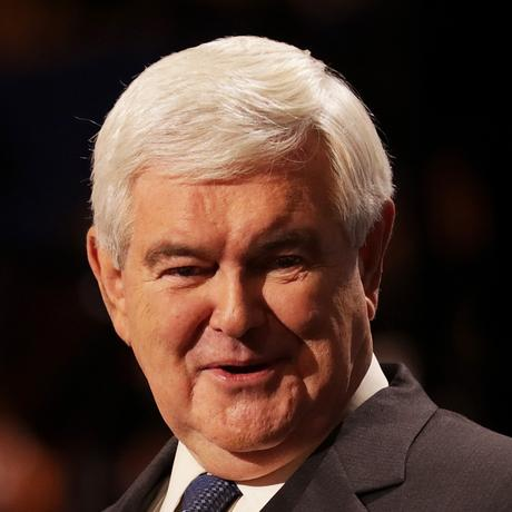 Donald Trumps Team: Newt Gingrich