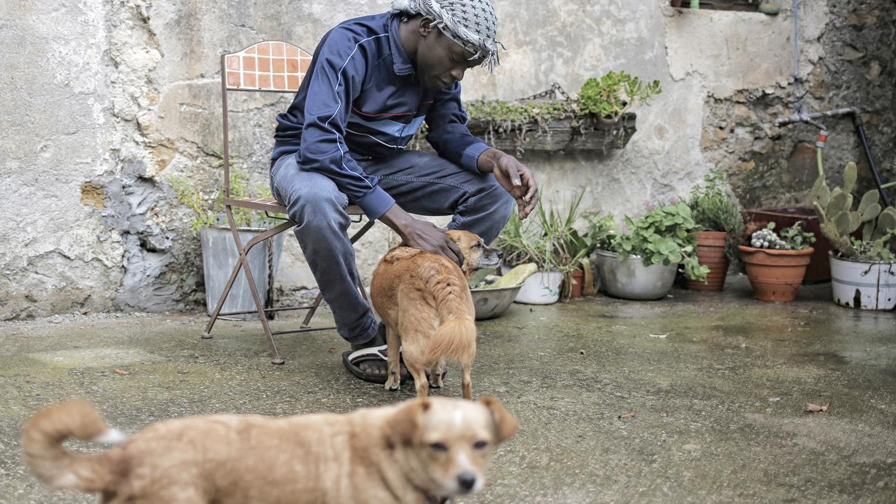Ein Bergdorf in Frankreich hilft Flüchtlingen
