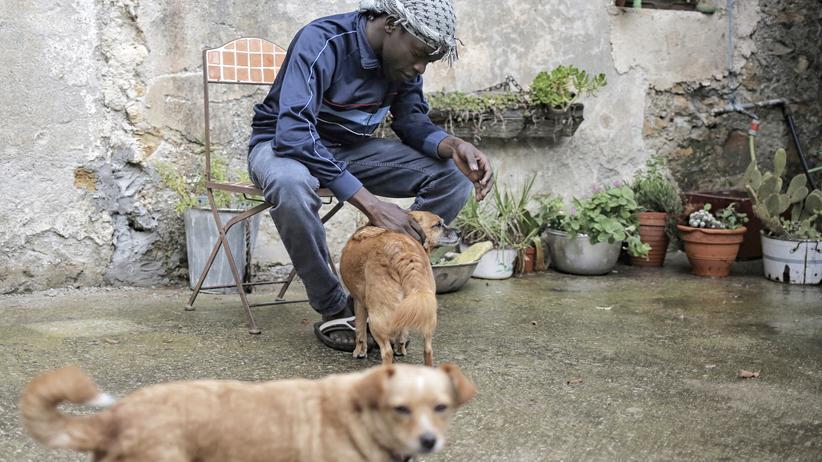 Flüchtlinge in Frankreich: Flüchtling auf einem der Höfe in Breil-sur-Roya