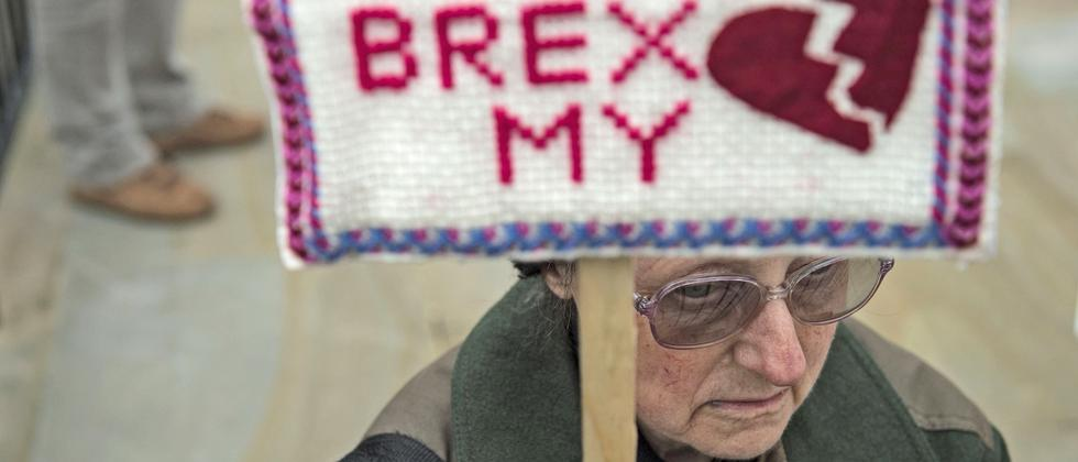 brexit-grossbritannien-remain-waehler Demonstration