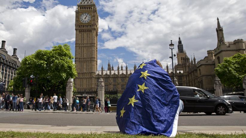 Brexit: Protest, als es schon zu spät war: Drei Tage nach dem Referendum demonstriert dieser junge Mann vor dem britischen Parlament sein Missfallen am Brexit-Votum.