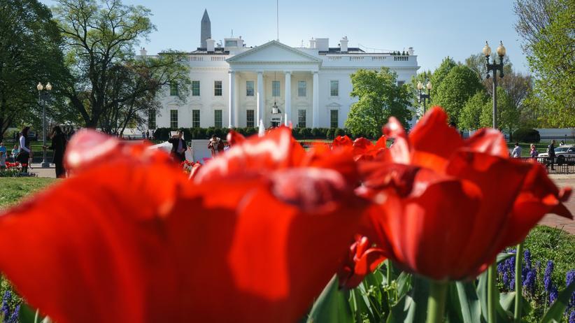 US-Regierung: Das Weiße Haus in Washington