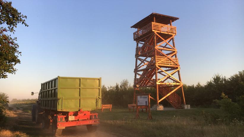 Einer von elf Türmen in Tyukod im Osten Ungarns
