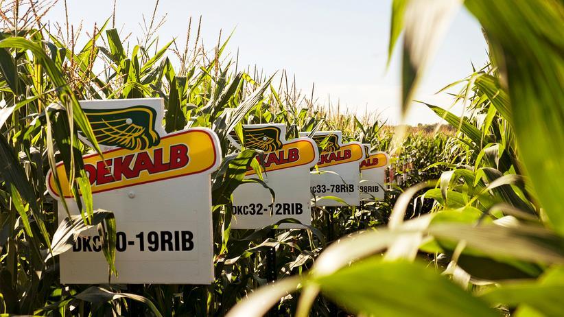 Europäisches Parlament: Monsanto-Vertreter dürfen nicht mehr ins EU-Parlament
