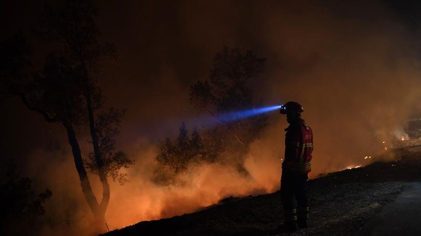 Europäische Kommission: Feuerwehrmann bei einem Waldbrand in Portugal