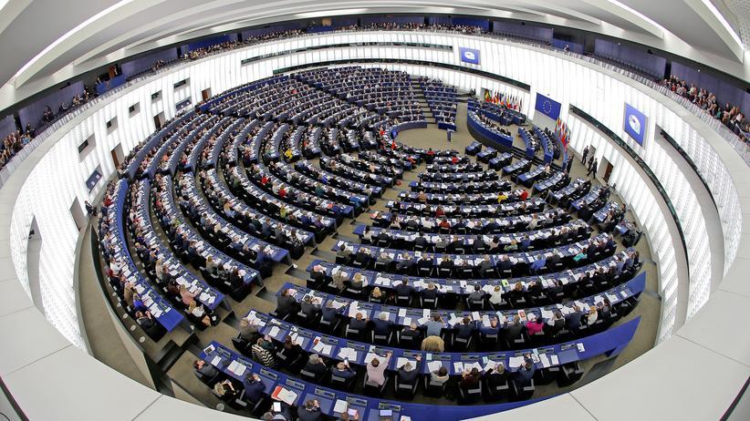 Kurdenmiliz YPG: EU Parlament Straßburg