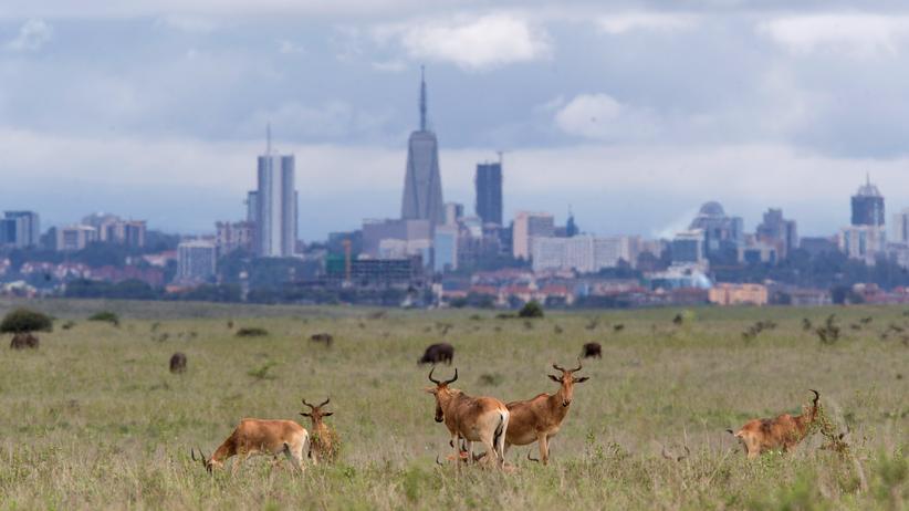 Kenia: Jetzt sind wir dran