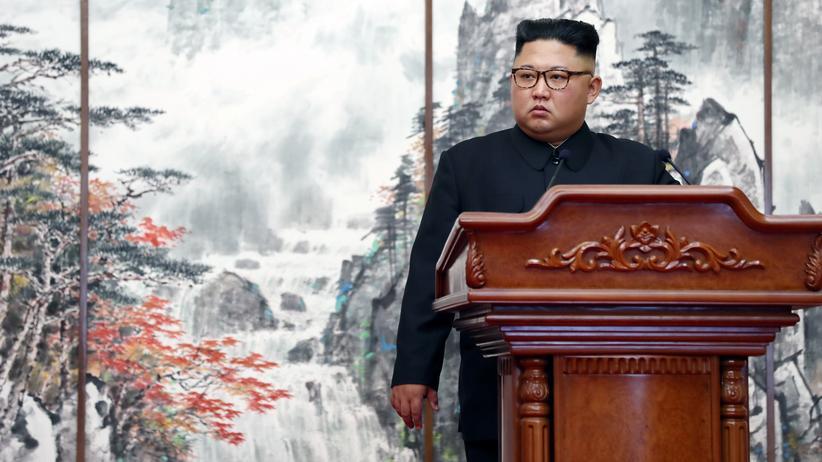 Nordkorea: Kim Jong Un will zweites Gipfeltreffen mit Donald Trump
