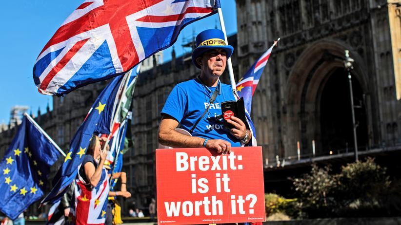 Brexit: Ein Brite demonstriert in London gegen den Brexit.