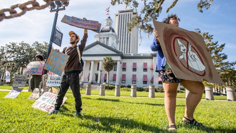 US-Midterms: Demonstranten in Florida hatten unter anderem die Neuauszählung der Stimmen in dem Bundesstaat gefordert