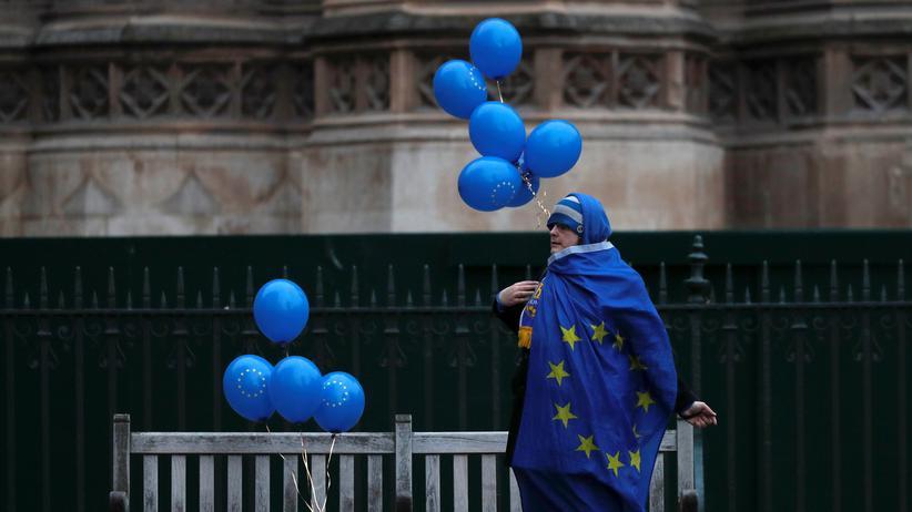 Europäische Union: Anti-Brexit-Demonstrant vor dem britischen Parlament in London