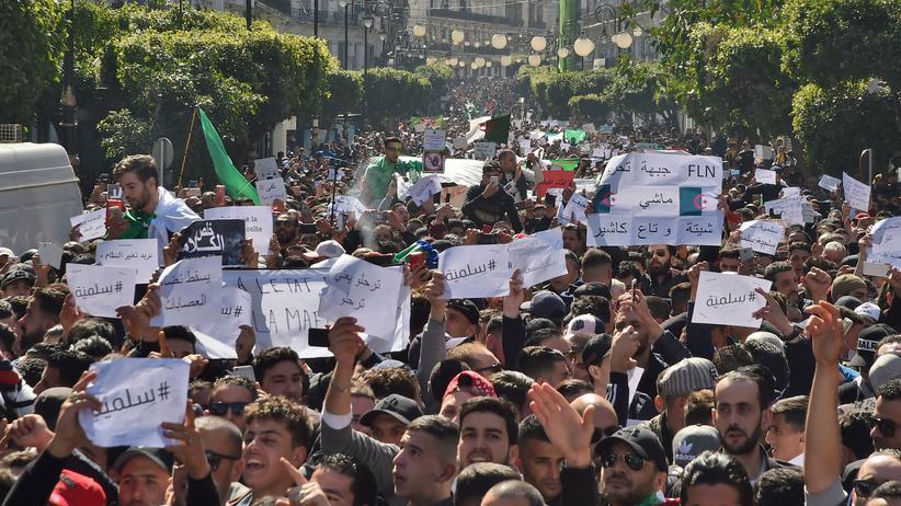 Algerien: Zehntausende demonstrieren gegen Präsident Bouteflika