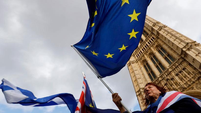 Großbritannien: Vor dem britischen Parlament demonstriert eine Frau mit einer EU-Flagge gegen den Brexit.